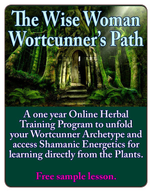 The Wortcunner's Path