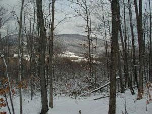 Four Shields Seasonal Initiation for Winter
